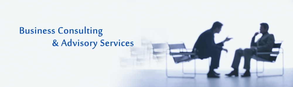business-consulting-1000x300_c